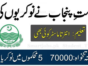 Latest Punjab Government Jobs Apply Online New Jobs in 5 Departments