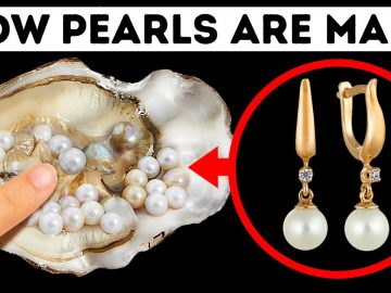 Something Living Hides in Every Pearl, See What