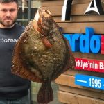 Giant Sea fish curry   World Biggest Fish Curry   How to cook Giant Fish Recipe