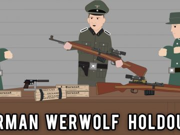 How did the Germans keep fighting the Allies after WW2?