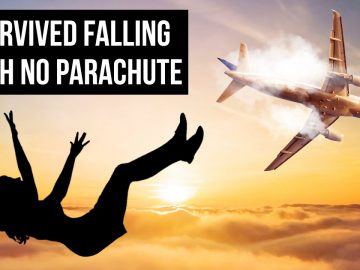 They Survived Falling from a Plane But That Was Only the Beginning
