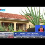 Kitchen Gardening: Government upbeat as Kenyans turn to small backyard gardens to make a living 4