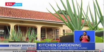 Kitchen Gardening: Government upbeat as Kenyans turn to small backyard gardens to make a living 21