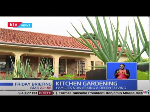 Kitchen Gardening: Government upbeat as Kenyans turn to small backyard gardens to make a living 1