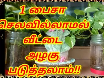 🆕Home decoration ideas in tamil | Tamil | BrainTube Tamil 3