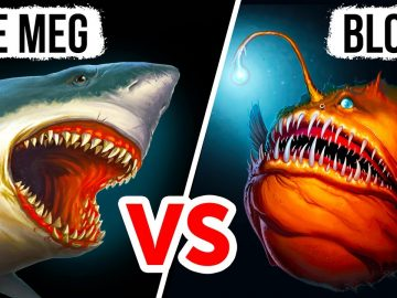 What If Megalodon and the Bloop Had to Divide the Ocean
