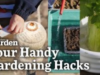 Four Handy Gardening Hacks! | Kitchen Garden Magazine | 24