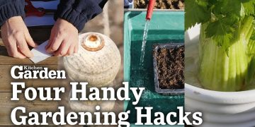 Four Handy Gardening Hacks! | Kitchen Garden Magazine | 20