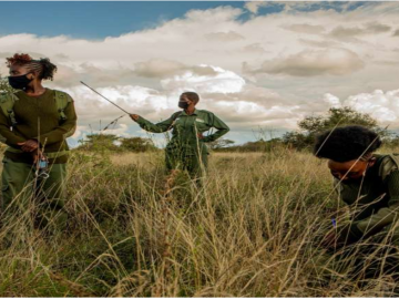 Team Lioness shakes up the ranks of Kenya's formerly all-male wildlife rangers 15