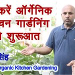 Easy way to start organic kitchen Gardening 3