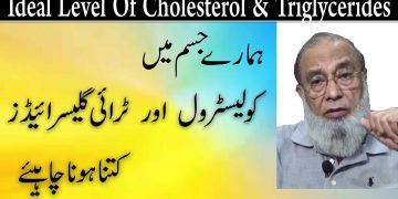 What Is The Ideal Level Of Cholesterol And Triglycerides