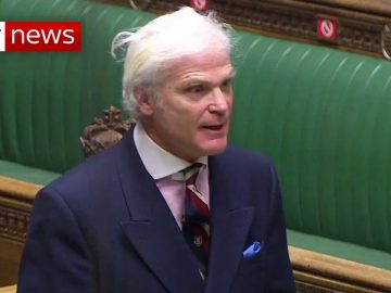EXCLUSIVE: Tory MP Sir Desmond Swayne urged anti-vaxxers to 'persist' against COVID restrictions