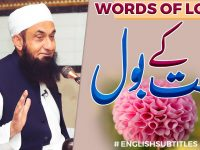 Words of Love | Molana Tariq Jamil | Latest Clip