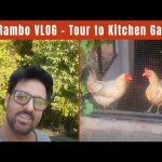 Jan Rambo Vlog | Kitchen Garden Tour 4