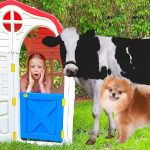 Nastya and a Funny Collection of Summer Stories for Kids 1