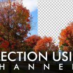 Select Trees using Channels in Adobe Photoshop - Urdu / Hindi