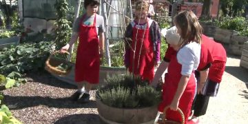 Join the Stephanie Alexander Kitchen Garden National Program 5
