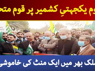 Nation is united on Kashmir Solidarity Day  | Dawn News