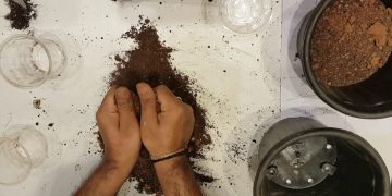 Soil mix for Kitchen Gardening in Telugu to grow organic gardening 3