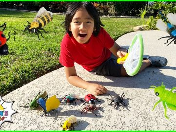 Kids Bug Hunt at home and learn about Bugs facts with Ryan! 9