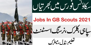 Pakistan Scouts jobs 2021 , New jobs in Pakistan Government