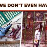 25 Creepy Playgrounds That Will Scar Your Child For Life
