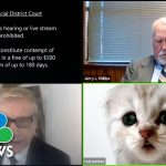 Lawyer Accidentally Uses Zoom Cat Filter During Virtual Court Session, Unable To Turn It Off