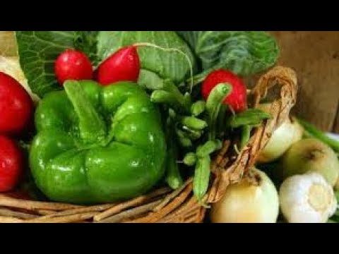 Winter/सर्दियों की 🌽Vegetables/ सब्जियाँ ।। Winter Vegetables information||Kitchen Gardening ideas 1