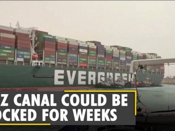 Suez Canal Blockade: How the giant ship is blocking the Suez? | Latest English News | WION News