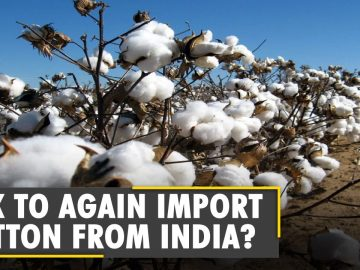 Pakistan seeks to lift ban on import of cotton from India   India-Pak Cotton Diplomacy   World News