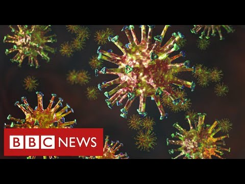 """New mutated coronavirus from South Africa is """"highly concerning"""" - BBC News"""