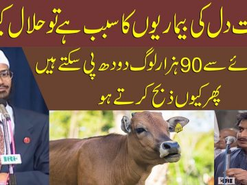 Beef is the cause of heart disease, so why is it halal?    dr zakir naik