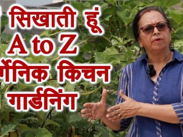 A to Z , terrace, kitchen, roof top gardening expert 14