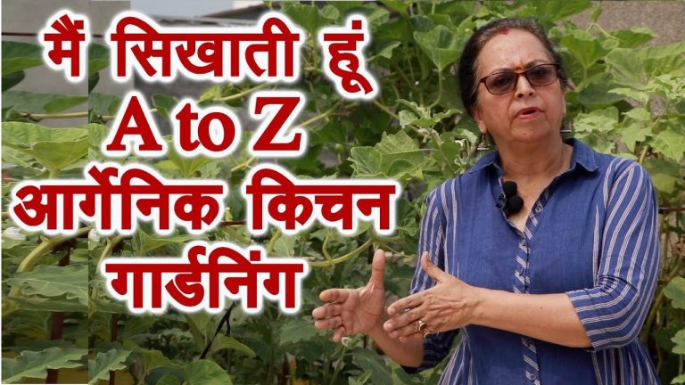 A to Z , terrace, kitchen, roof top gardening expert 1