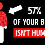 You Share Over Half Your Body With Something Unhuman