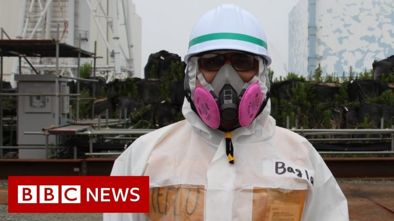 Fukushima: The nuclear disaster that shook the world - BBC News