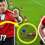 Nigel Owens reacts to France v Wales big refereeing decisions   Whistle Watch