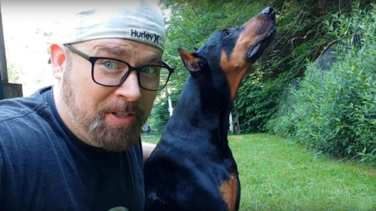 Doberman Pinscher saves owner from snake while filming
