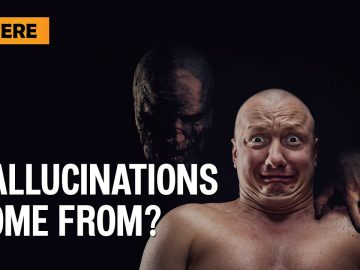 Where do Hallucinations come from