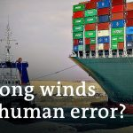 Suez Canal: How to keep ships from running aground in the future | DW News