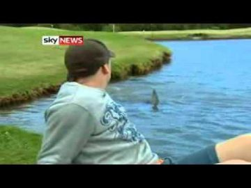 Golfers Brave Shark-Infested Course!