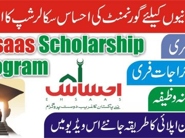 How To Get Ehsaas Scholarship | Scholarship Online Apply | Govt Scholarship Program | Say Job City