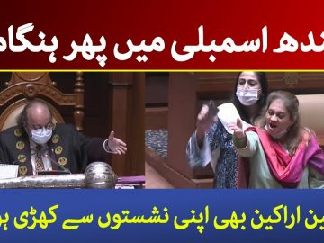 PTI and PPP- MPAs fight in today Sindh Assmebly session | Dawn News