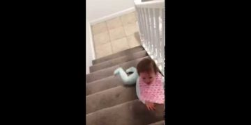 Baby slides down stairs on her stomach