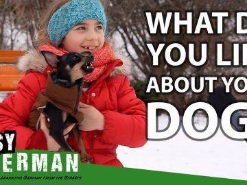 Germans Talking About Their Dogs | Easy German 389