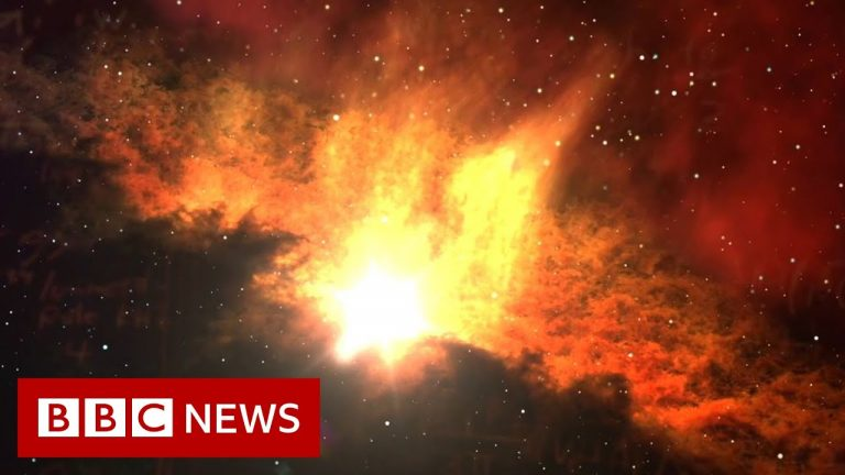 Is there a fifth force of nature? - BBC News