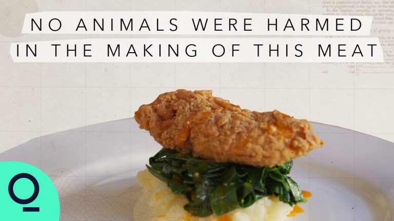 Lab-Grown Real Meat is Finally Here