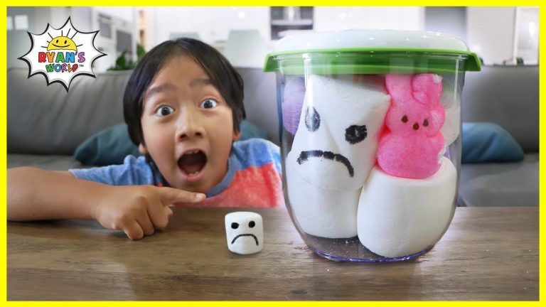 Giant Marshmallow in a Vacuum Easy DIY Science Experiment for kids! 1