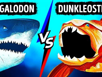 What If Megalodon Met Fish With Strongest Bite Ever