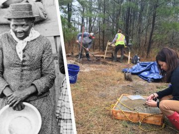 Harriet Tubman's Family Brought Together by Swamp Dig